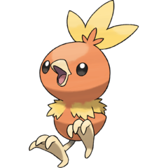 Torchic pokemon