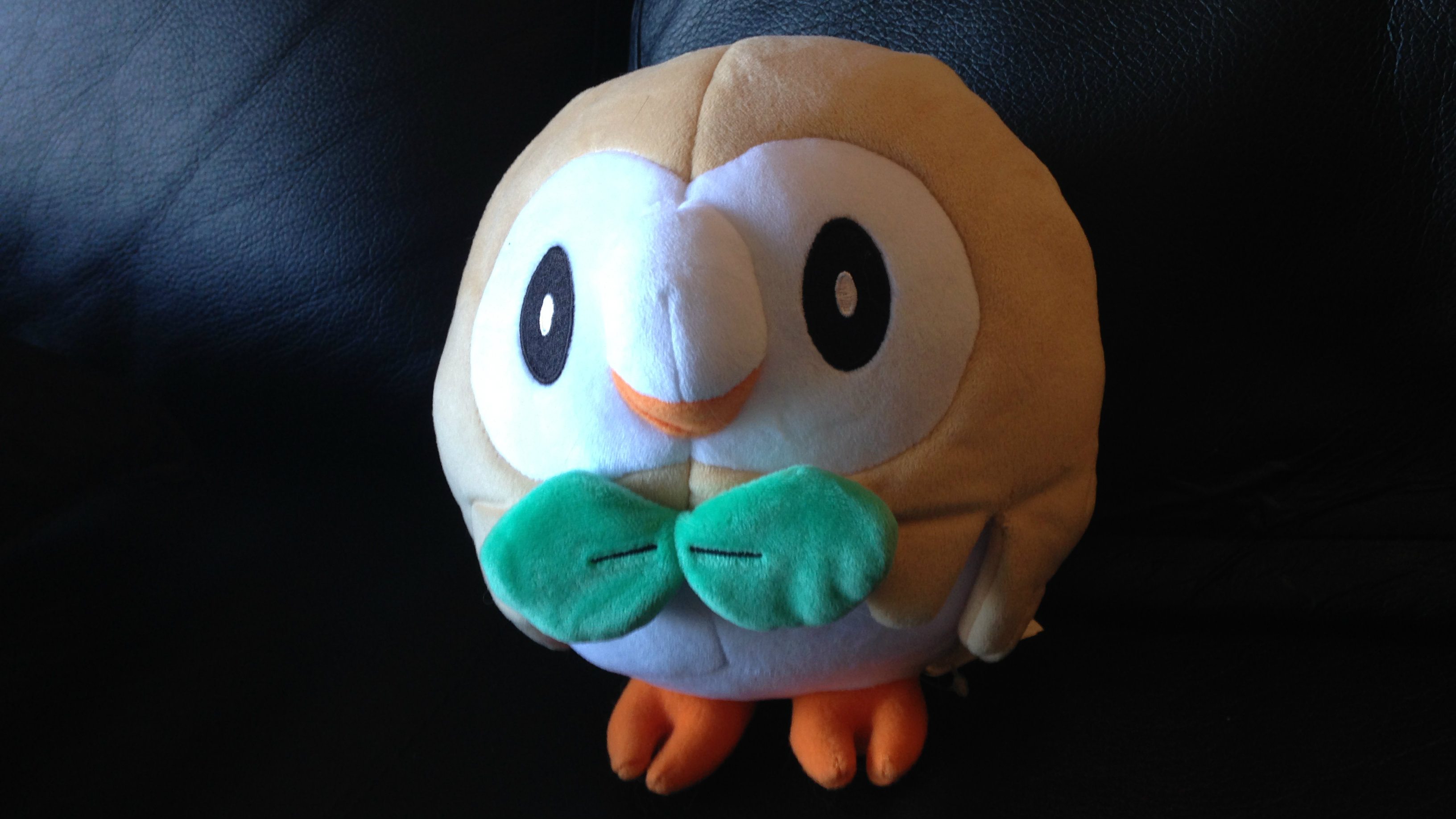 pokemon-sun-and-moon-rowlet